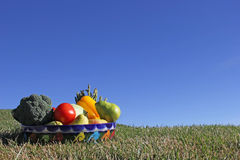 Assortment of Fruit and Vegetables in Mexican clay bowl. On green grass with blue sky background Royalty Free Stock Photos