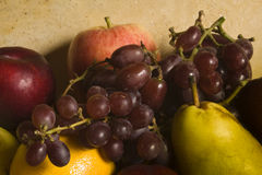 Assortment of Fruits Stock Image