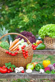 Assortment of fruits and vegetables Stock Photography