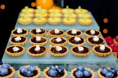 Assortment of fruity tarts Royalty Free Stock Photography