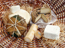 Assortment of gourmet cheeses. Assortment of delicious creamy gourmet handmade cheeses displayed on straw in a basket Stock Photo