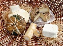 Assortment of gourmet cheeses Stock Photo