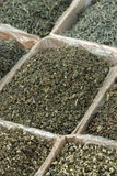 Assortment of green tea. Assortment of dried chinese green tea leaves Stock Images