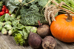 Assortment of green vegetables Royalty Free Stock Photos