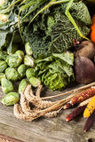 Assortment of green vegetables Royalty Free Stock Photography