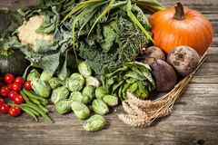 Assortment of green vegetables Royalty Free Stock Images