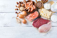 Assortment of healthy protein source and body building food. Meat beef salmon chicken eggs dairy products milk cheese yogurt beans quinoa nuts oat meal. Copy Royalty Free Stock Photos