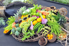 Assortment healthy vegetables Royalty Free Stock Photography