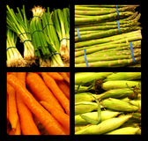 Assortment of Healthy Vegetables Royalty Free Stock Photos