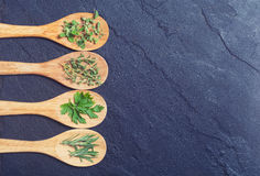 Assortment of herbs. In wooden spoon on black stone background Royalty Free Stock Photography