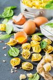 Italian food and ingredients, handmade tortellini with spinach and ricotta stock photo