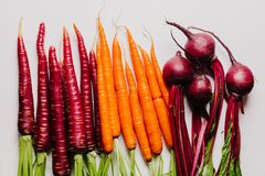 An assortment of loose raw beets and carrots. On white background Royalty Free Stock Image