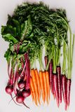 An assortment of loose raw beets and carrots. On white background Stock Photography