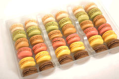Assortment of macaroons Stock Images