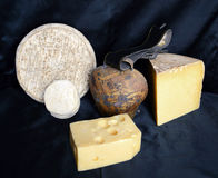 Assortment of mountain cheese Royalty Free Stock Photos