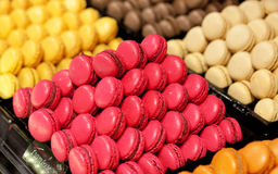Assortment of multicolored macaroons Stock Photos