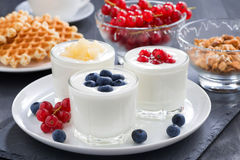 Assortment natural yogurt with fresh berries and waffles Royalty Free Stock Images