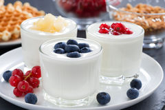 Assortment natural yogurt with fresh berries and waffles Royalty Free Stock Photography