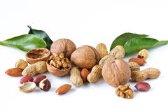 Assortment of nuts. Royalty Free Stock Images
