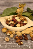 Assortment of nuts Stock Photography