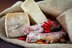Assortment Of Cheese And Salami Royalty Free Stock Image