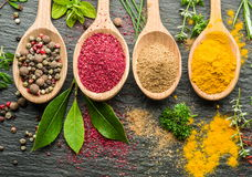 Assortment Of Colorful Spices In The Spoons. Stock Image