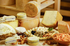 Assortment of organic gourmet cheeses Royalty Free Stock Photography