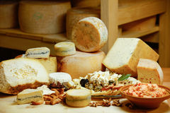 Assortment of organic gourmet cheeses Royalty Free Stock Image