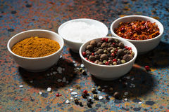 Assortment of pepper, different spices and sea salt in bowl Royalty Free Stock Photography