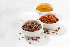 Assortment of pepper, salt and spices in bowls on white table Stock Photography