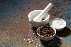 Assortment of pepper, sea salt and a mortar on a dark background Royalty Free Stock Image