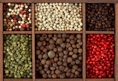 Assortment of peppercorns Royalty Free Stock Photography