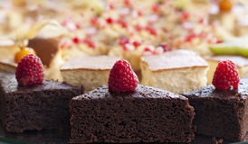 Assortment of pieces of chocolate cakes Stock Images