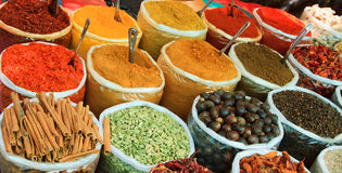 Assortment of powder spices Royalty Free Stock Photos