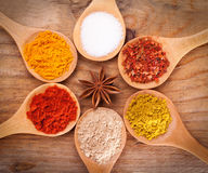 Assortment of powder spices on spoons on wooden background. Powder spices on spoons on wooden background Stock Photography