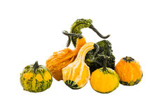 Assortment of pumpkins, gourds. Isolated over white background Stock Photo