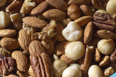 Assortment of Raw, Organic Nuts Royalty Free Stock Image