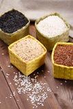 Assortment of rice Stock Image