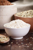 Assortment of rice Stock Images