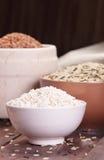 Assortment of rice Royalty Free Stock Photos