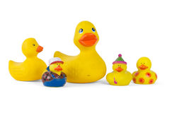 An assortment of rubber ducks Royalty Free Stock Photo