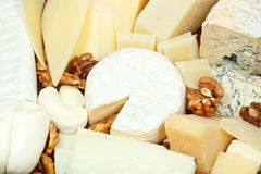 Assortment of sliced cheeses and walnuts Stock Photo