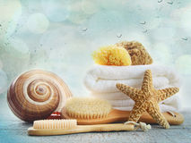 Assortment of spa brushes and sponges on white Stock Photography