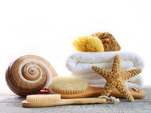 Assortment of spa brushes and sponges on white Stock Images