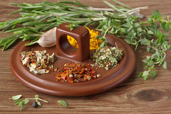 Assortment of spices. Stock Photo