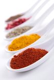 Assortment of spices Stock Photography