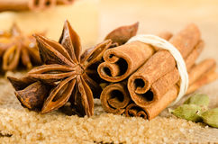 Assortment of spices for christmas Stock Image