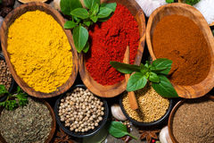 Assortment of spices, closeup Royalty Free Stock Image