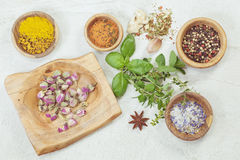 Assortment of spices and herbs Royalty Free Stock Photography