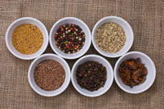 Assortment of Spices Stock Image